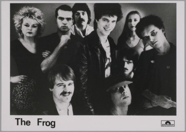 1982 The Frog Polydor
